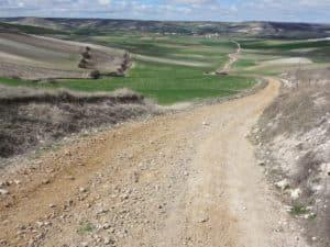 chemin de Compostelle
