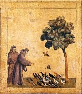 794px-Giotto._Predella_3